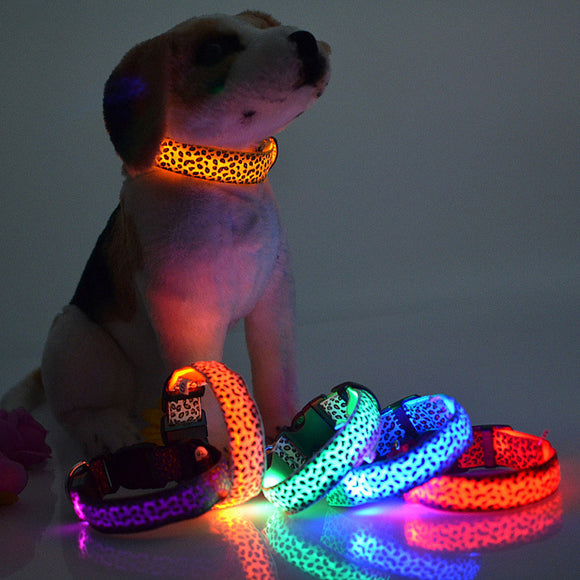 Free! Glow in the dark dog collar