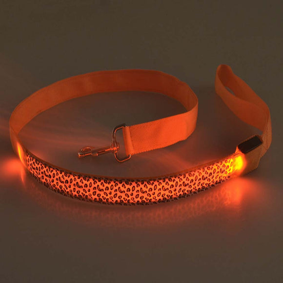 Glow in the dark Dog Leash