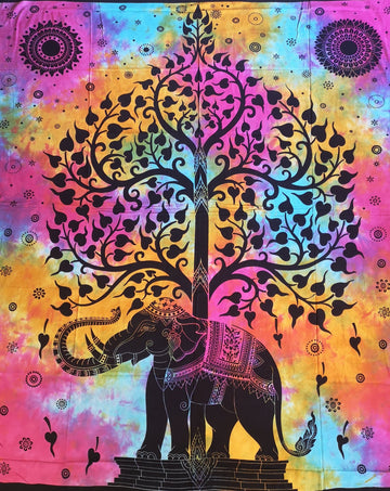 Heart Leaf Elephant Tree