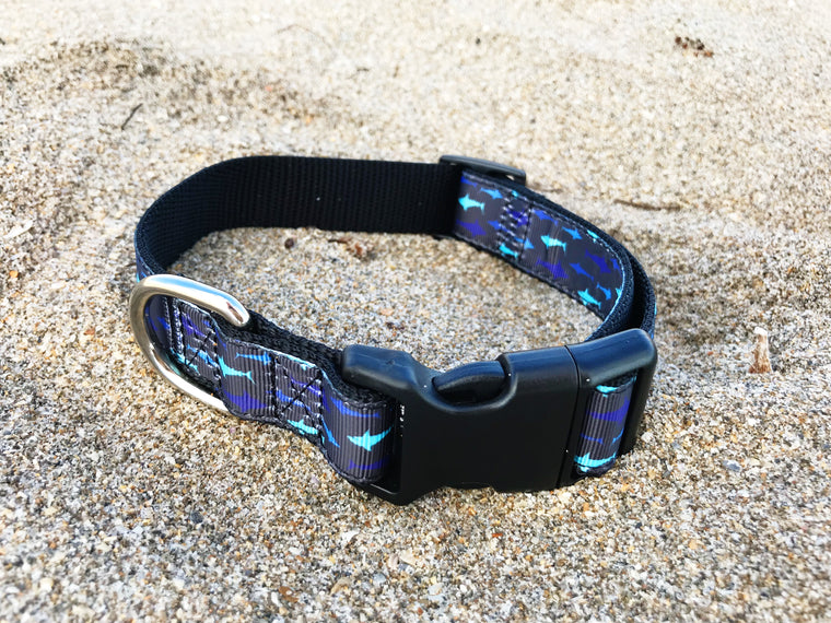 Black and Blue Shark Collar