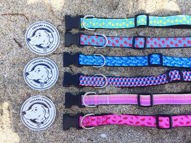Collars4Change Dog Collars