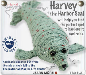Harvey the Harbor Seal