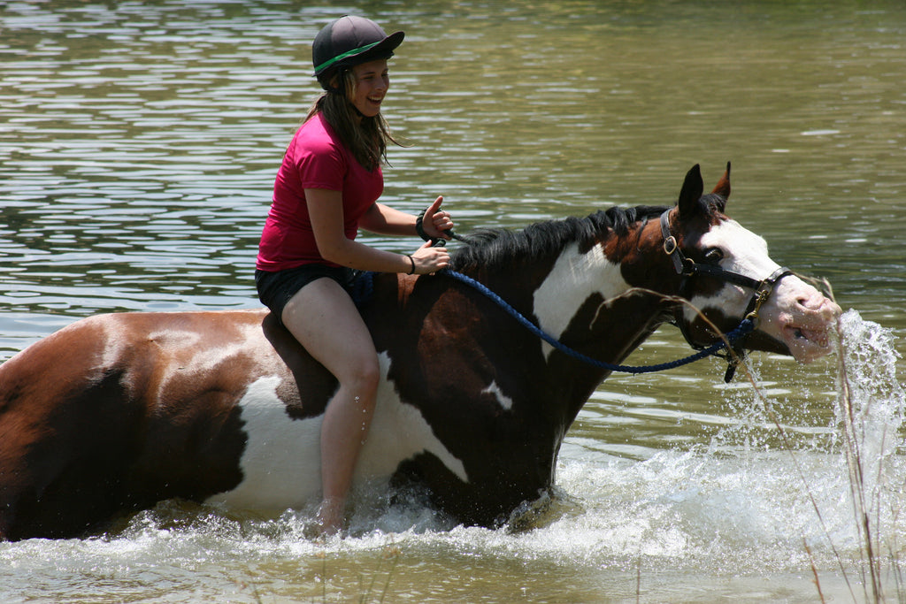 How important is water for your horse?
