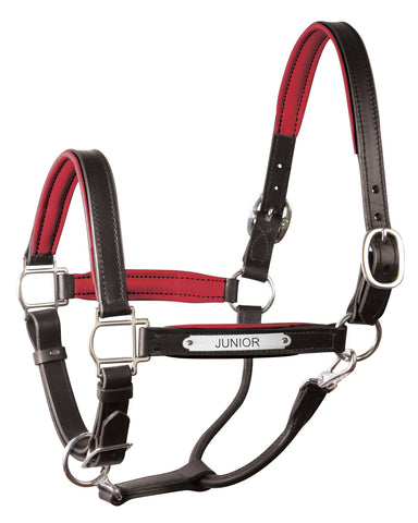 Horse Tack and Equipment