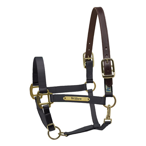 Premium Saftey Halter with Name Plate