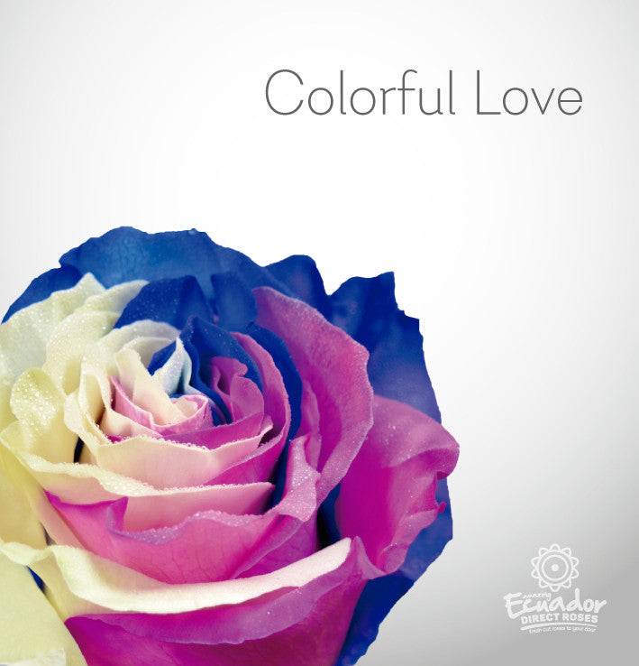COLORFUL LOVE - Multicolor Tinted Rose