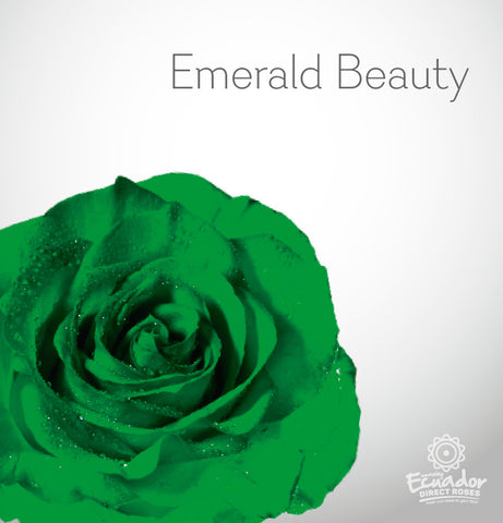 EMERALD BEAUTY - Green Tinted Rose