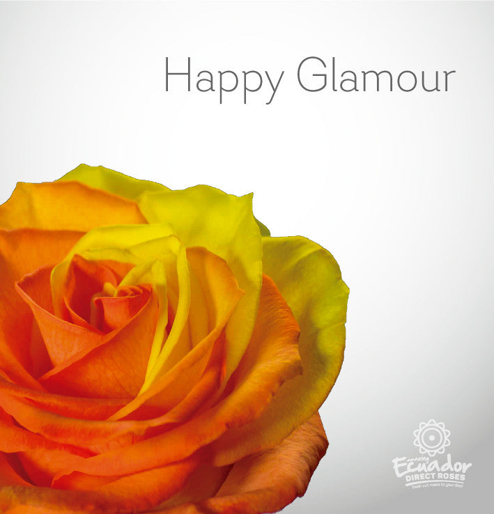 HAPPY GLAMOUR - Bicolor Tinted Rose