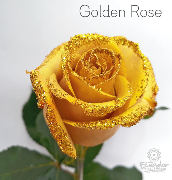 GOLDEN ROSE - Glitter and Tinted Rose