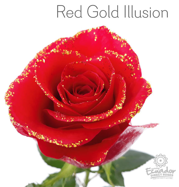RED GOLD ILLUSION - Glitter Rose
