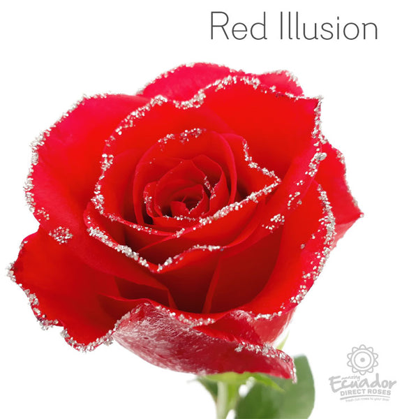 RED ILLUSION - Glitter Rose