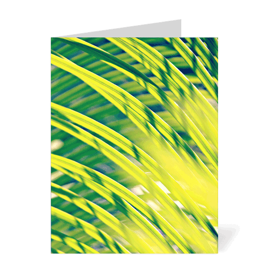 Tropical Abstract Note Cards