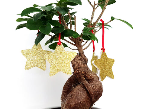 Christmas Tree Decorations - Hanging Stars in gold