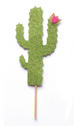 Cactus Themed Cake Topper Pack | Custom Name & Age - First birthday Inspired by Alma - Inspired by Alma Inspired by Alma - Inspired by Alma  Cake topper - Party decorartions, cake toppers, cupcake topper, confetti, iron on, outfit, straws, decor, first birthday party decorations.,