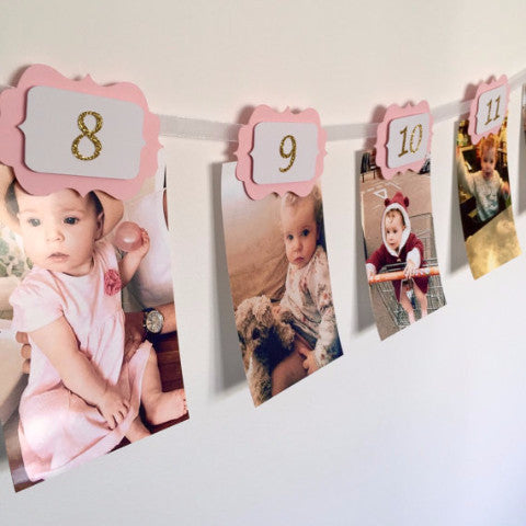 12 month first birthday photo banner - party decorations for first birthday baby pink
