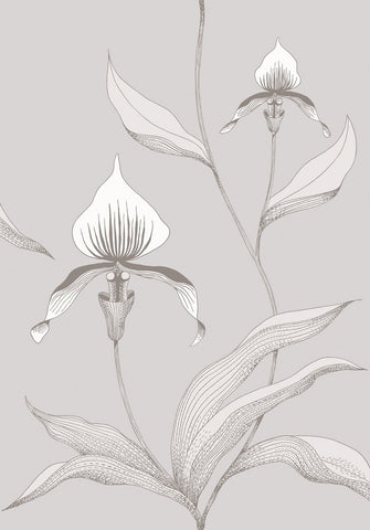Cole & Son Orchid 95/10055