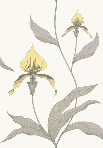 Cole & Son Orchid 95/100567