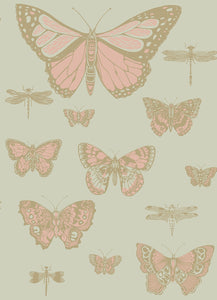 Cole & Son Butterflies & Dragonflies 103/15063