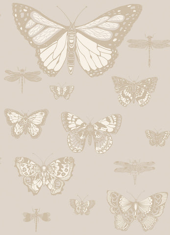Cole & Son Butterflies & Dragonflies 103/15064