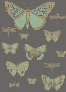 Cole & Son Butterflies & Dragonflies 103/15067