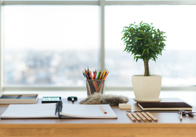 How Organizing Your Office Can Increase Productivity