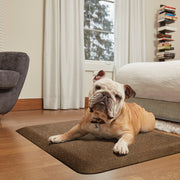 PetMat Squared Collection – Golden Retreat - WellnessMats