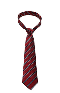 Red & Blue Stripe Mulberry Silk Tie - DV Clothiers - The Best Custom Mens Suits In Vancouver