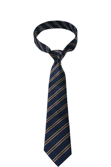 Blue & Brown Stripe Mulberry Silk Tie