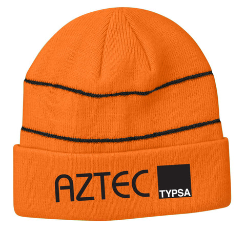 AZTEC Embroidered Reflective Beanie