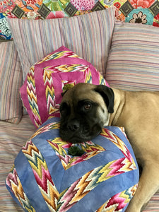 Ollie on La Todera Chevron Pillow