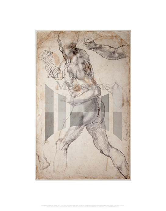 Study of a Striding Male Nude, Michelangelo Buonarroti