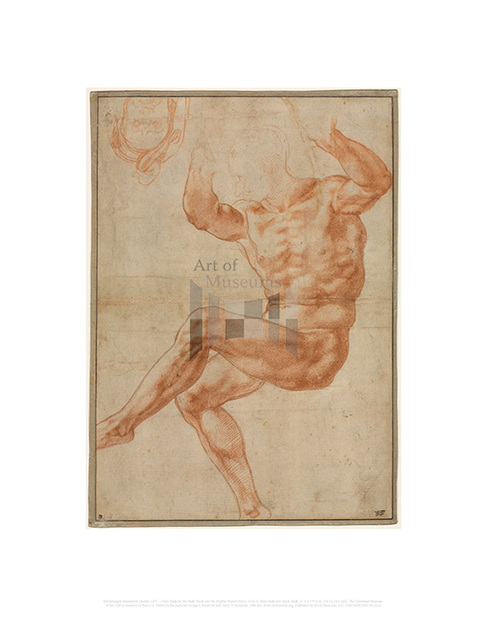 Study for the Nude Youth over the Prophet Daniel (recto), Michelangelo Buonarroti