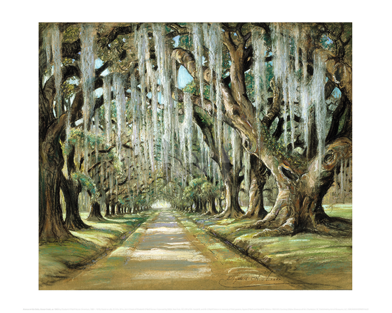 Avenue at the Oaks, Goose Creek, Elizabeth O'Neill Verner