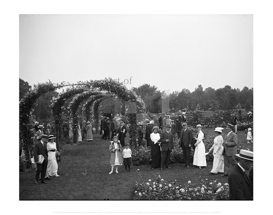 People in Elizabeth Park Rose Garden, Hartford and West Hartford, City of Hartford Connecticut