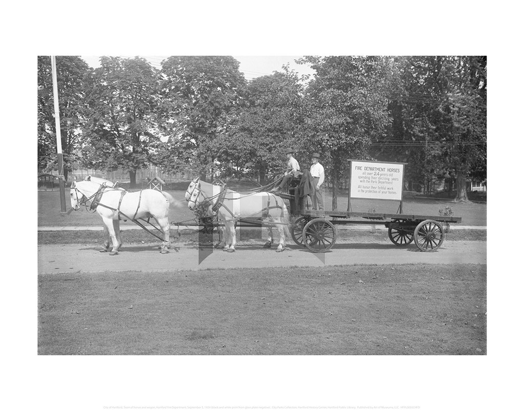 Team of horses and wagon, Hartford Fire Department, City of Hartford Connecticut