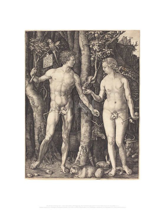 Adam and Eve, Albrecht Durer