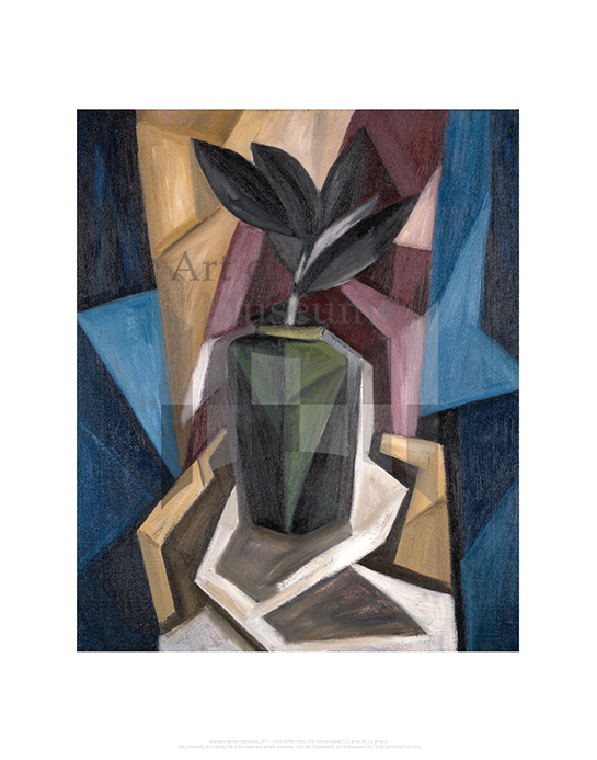 Rubber Plant, Marsden Hartley