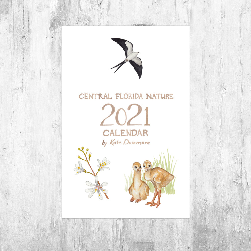 Central Florida Nature 2021 Calendar *PRE-ORDER*
