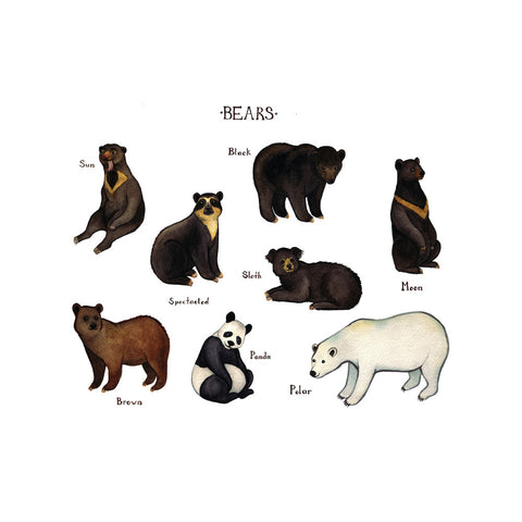 Bears of the World Art Print