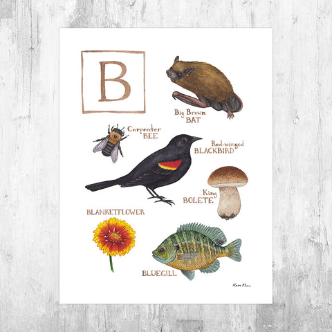 The Letter B Nature Art Print