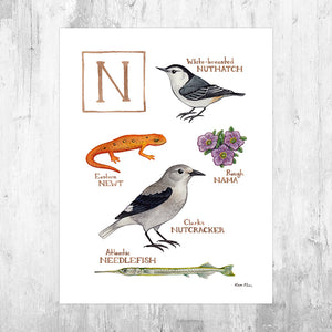 The Letter N Nature Art Print