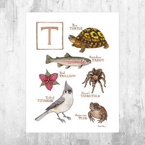The Letter T Nature Art Print