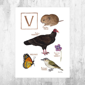 The Letter V Nature Art Print