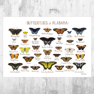 Alabama Butterflies Field Guide Art Print