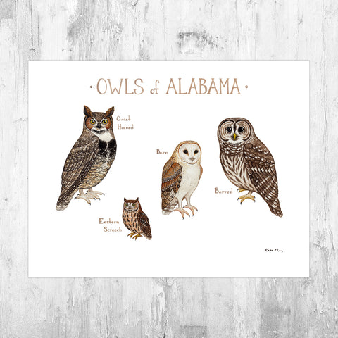 Wholesale Owls Field Guide Art Print: Alabama