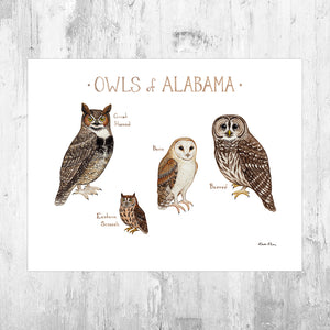 Alabama Owls Field Guide Art Print