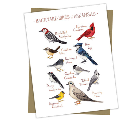 Wholesale Backyard Birds Field Guide Art Print: Arkansas