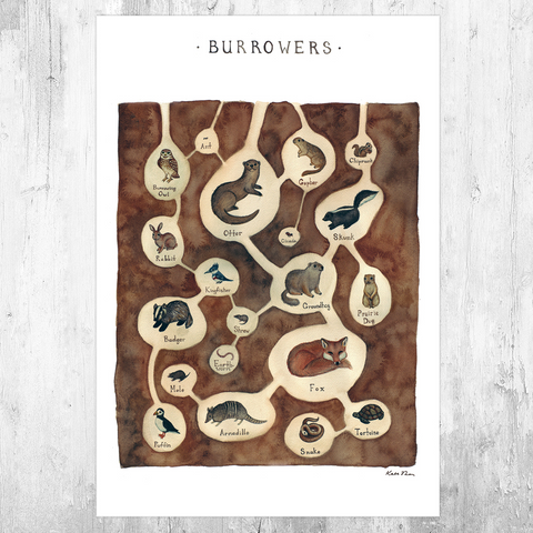 Burrowing Animals Field Guide Art Print