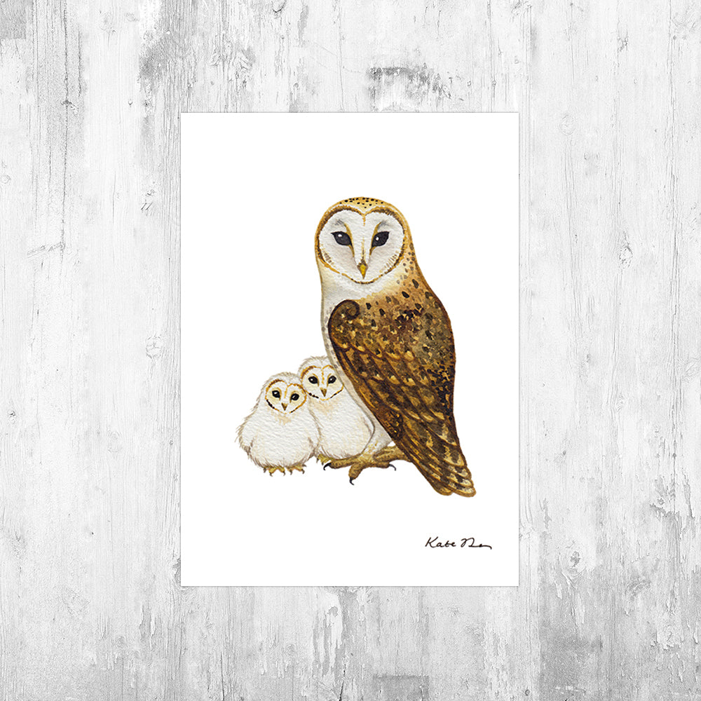 Barn Owl with Owlets Art Print