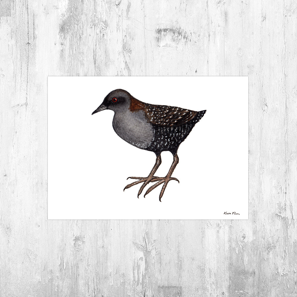 Black Rail Art Print